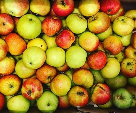 juicing apples