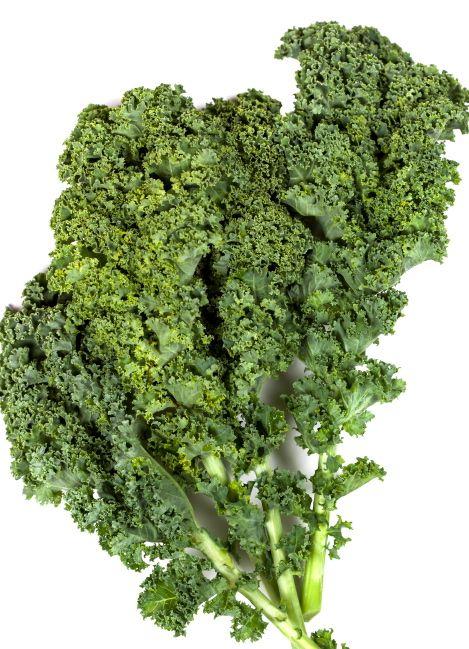 green leaf kale