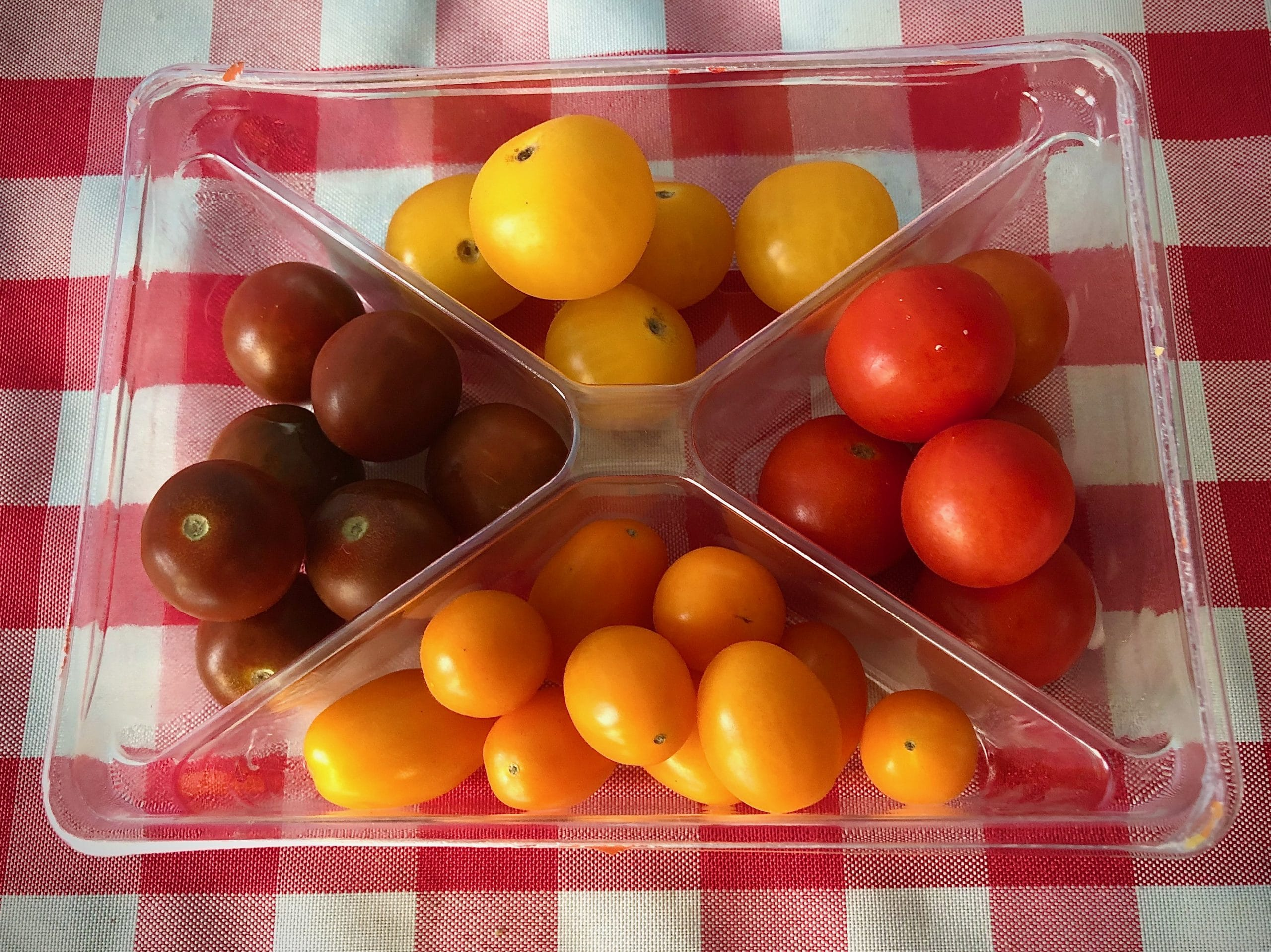 Kaleidos tomatoes