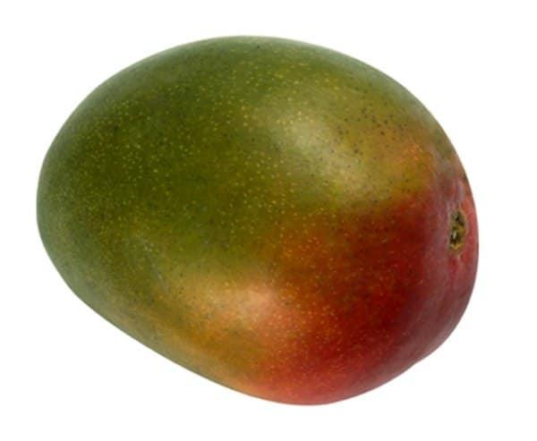 Kent Mango