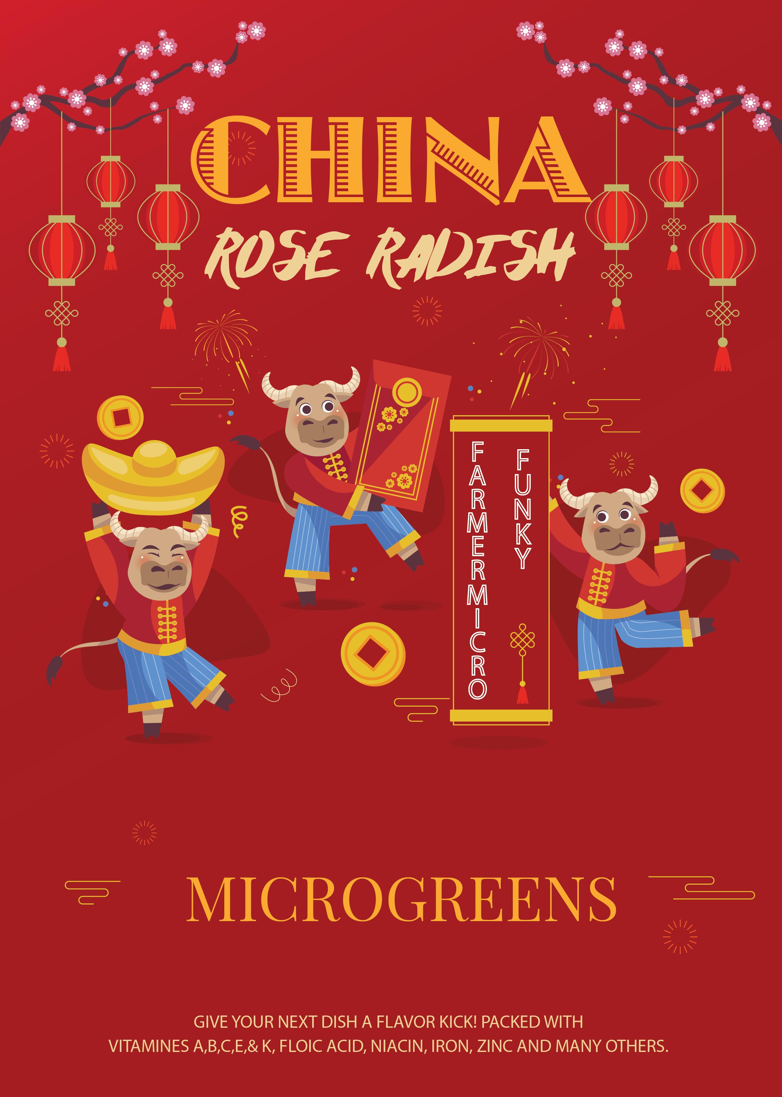 China Rose Radish