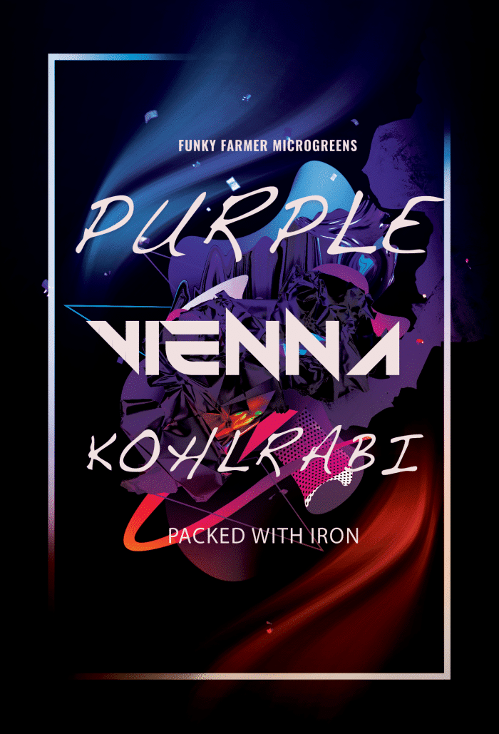 Purple Vienna Kohlrabi